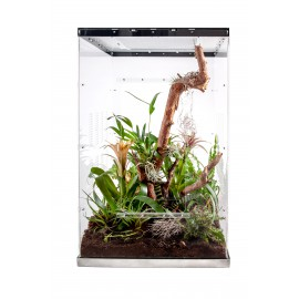 Live terrarium 50x50x80 with lighting