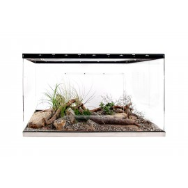 Live terrarium 100x50x50 with lighting