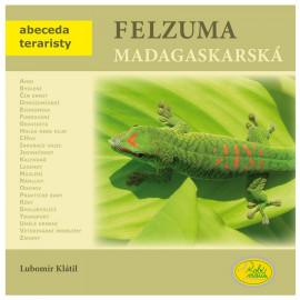 Madagascar felsuma