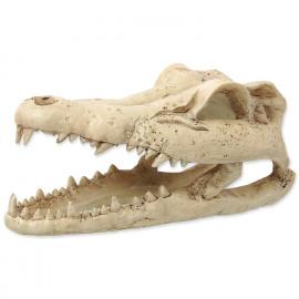 Krokodýlí lebka 13,8 cm Repti Planet