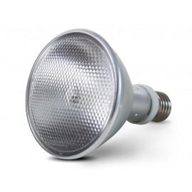 Full spectrum lamps