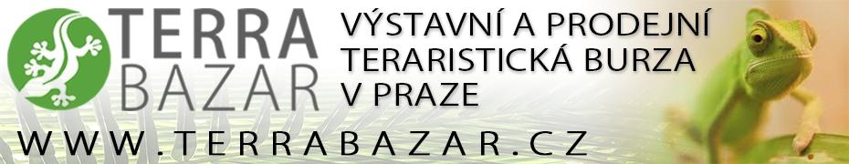 TERRABAZAR_930x180.jpg